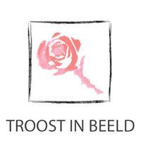 TROOST IN BEELD